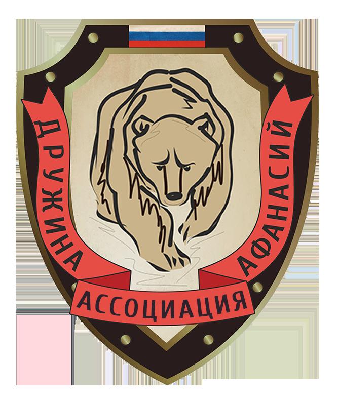логотип народной дружины